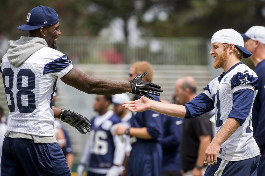 Image result for cole beasley camp