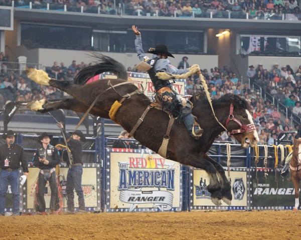 rodeo events saddle bronc riding