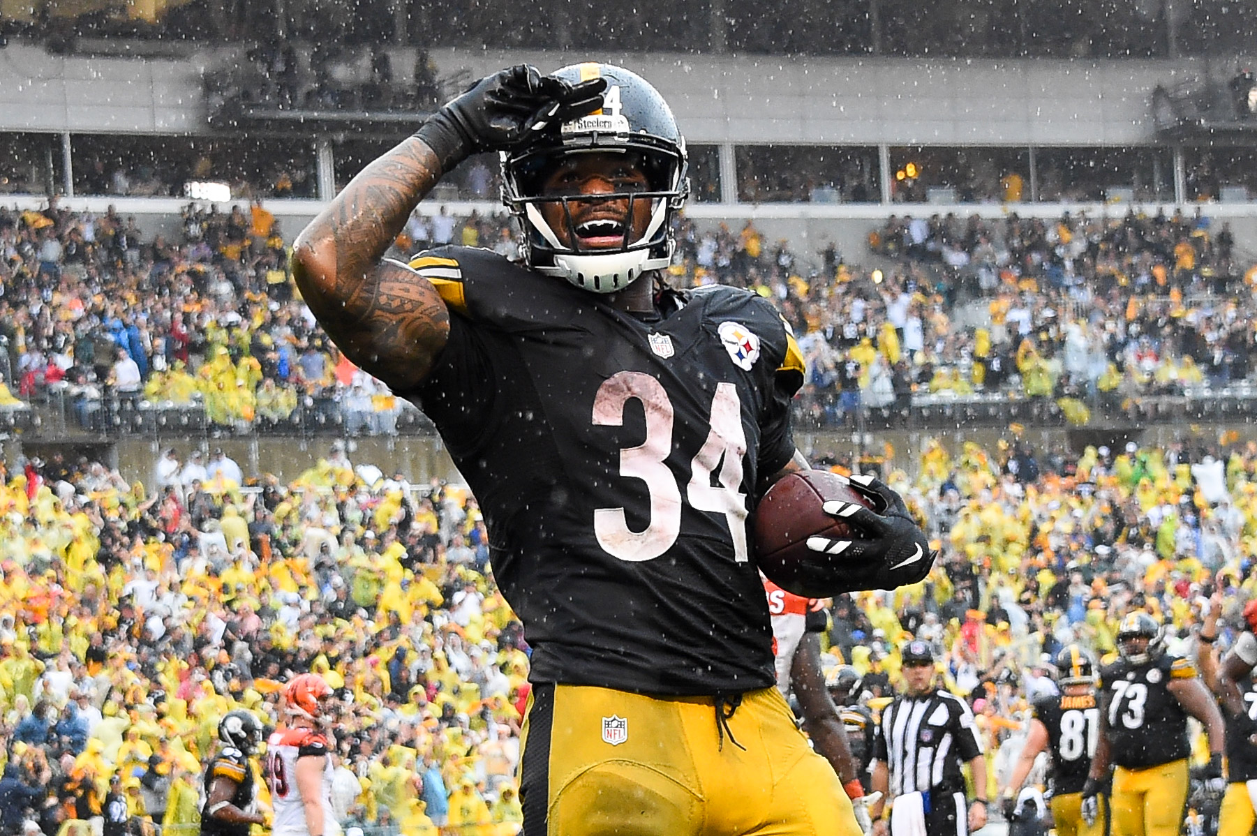 Free agent RB DeAngelo Williams rips Cowboys, fans: 'They always disappear in the playoffs'