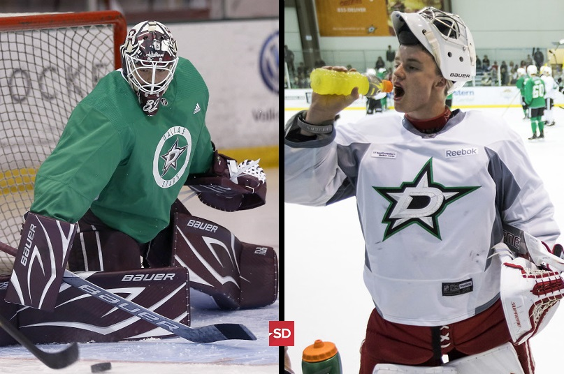A deeper look into the Dallas Stars' potential goalies of the future